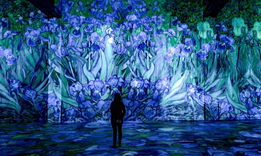 Van Gogh, Starry Night Exhibition, Paris