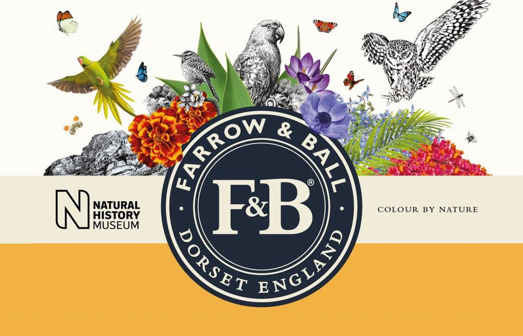 Farrow & Ball X Natural History Museum